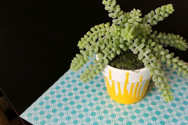 paint plant pots